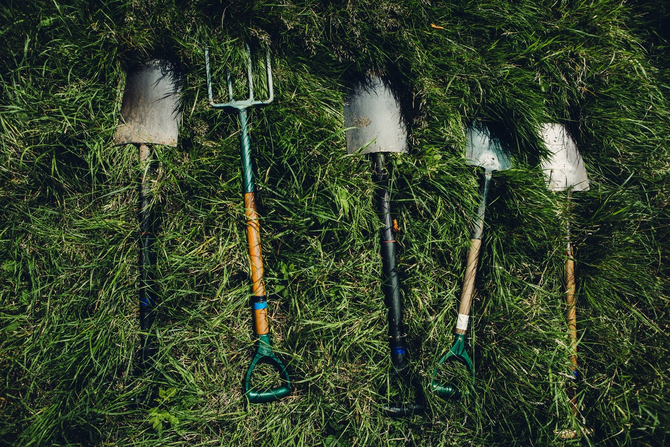 gardening tools lay down on grass